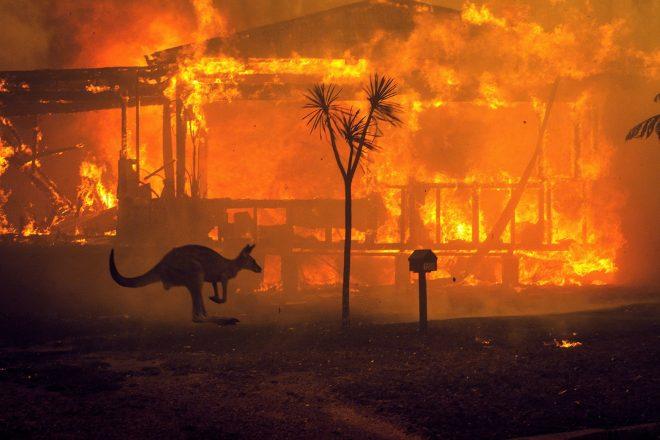 Avustralya'da kontrol edilemeyen yangına sanatçılar ve plak şirketlerinden destek